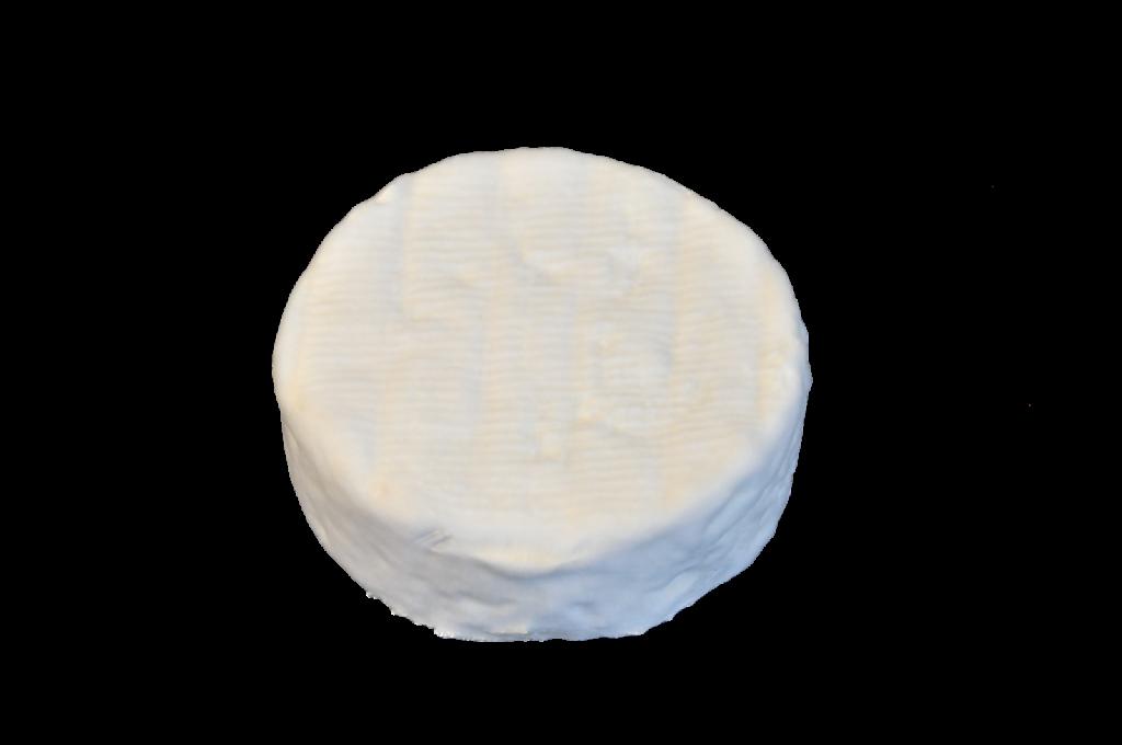 camembert-DSC0172.png